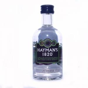 1 Ginebra - Ginebra Hayman´s 1820 Gin Liqueur 5cl